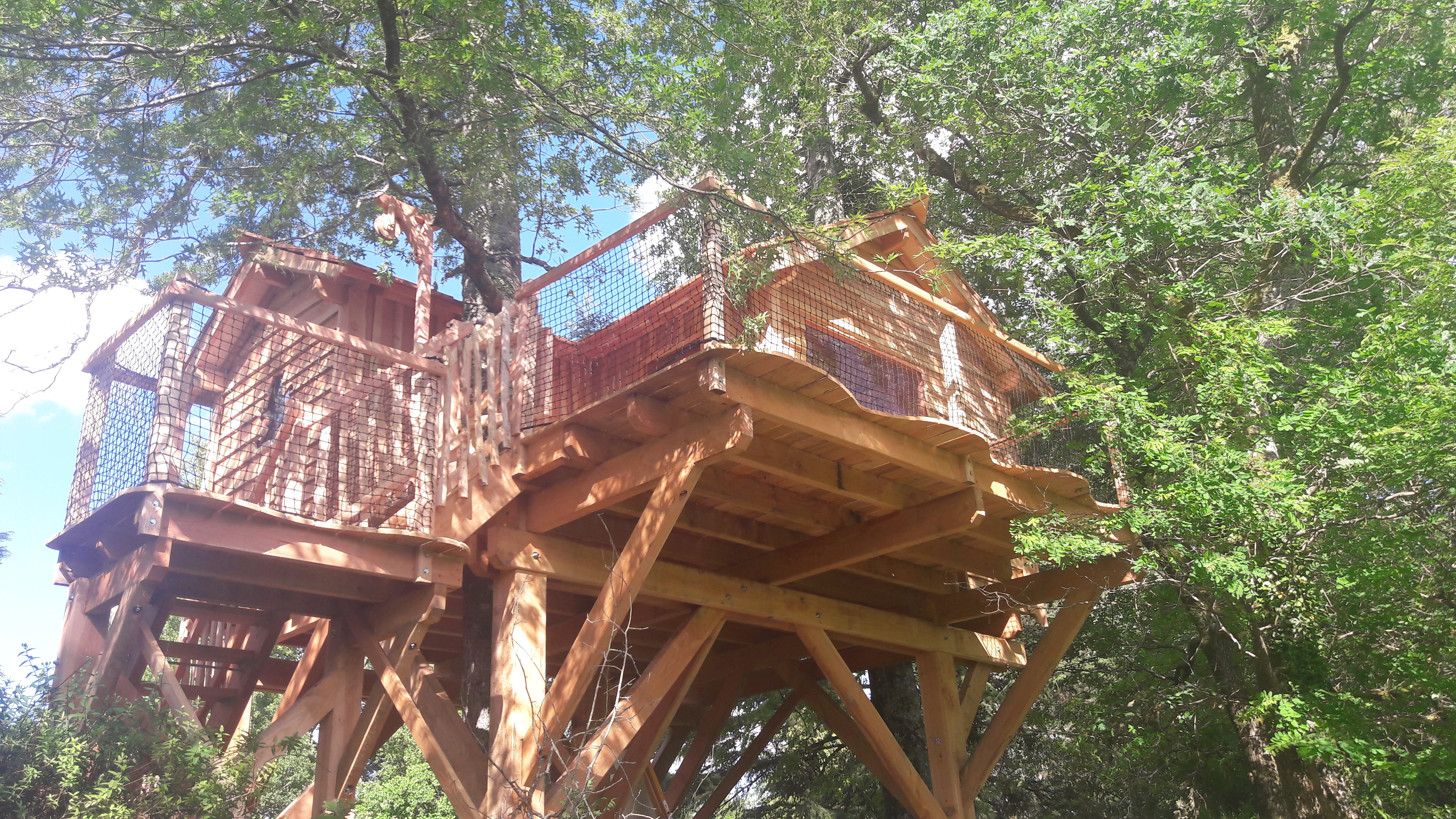 Great Bear Treehouse (3 to 5 people)
